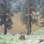 Brahma tal 2